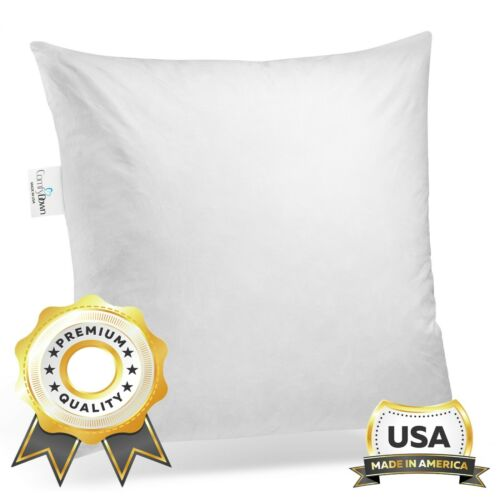 ComfyDown - Euro Square Pillow Insert FEATHER / DOWN  Sham Stuffer - ALL SIZES!!
