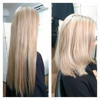 Beautiful creamy blonde foils $110