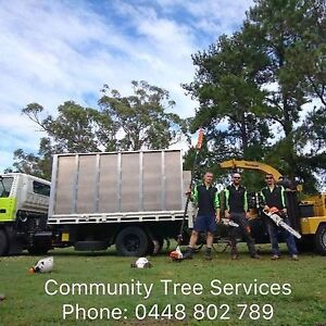 """Green waste removal with 15"""" chipper with winch and 10m3 tip truck Loganholme Logan Area Preview"""