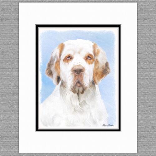 Clumber Spaniel Dog Original Art Print 8x10 Matted to 11x14