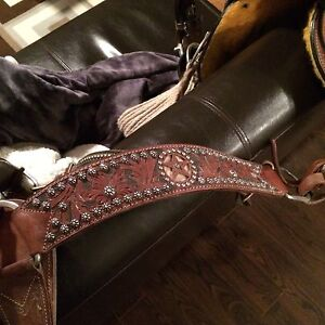 Headstall and Breast Collar