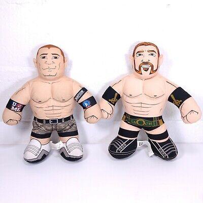 2011 WWE Mattel John Cena & Sheamus Laoch Brawlin Buddies Talking Plush Lot of 2