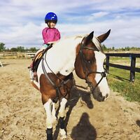 Horse back riding camp!