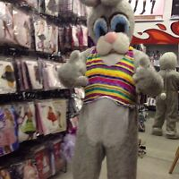 EASTER BUNNY FOR HIRE!!!!