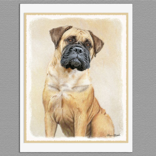6 Bullmastiff Dog Blank Art Note Greeting Cards