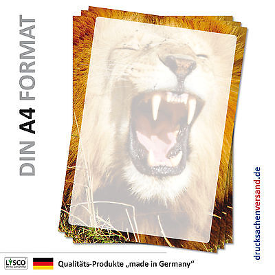 Motivpapier Briefpapier (Löwe-5072 DIN A4 25 Blatt) Tierpark Zoo Tiere Afrika