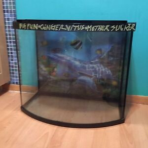 Bow front fish tank and all accessories