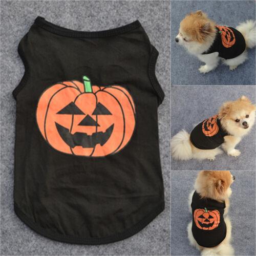 Pet Dog Halloween Pumpkin Outfit Costume Puppy Coat Sweater Jumper Cute Clothes 3