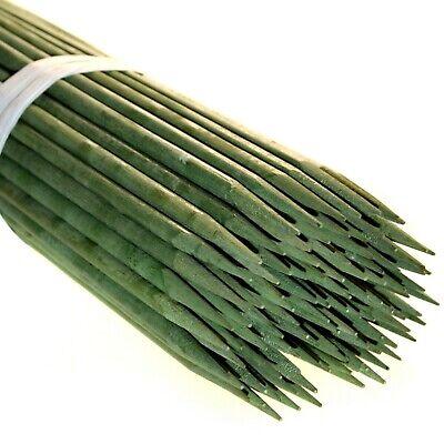 100 x Bambus Pflanzstäbe 60 cm  Pflanzenstäbe Bambussplitt Splittstäbe Anzucht