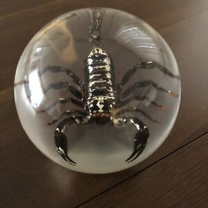 Acrylic Orb with Genuine Scorpion Inside