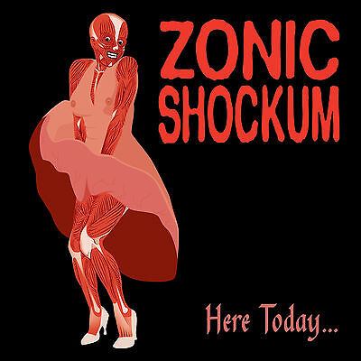 ZONIC SHOCKUM Here Today CD girl punk indie rock alternative philly philadelphia for sale  Shipping to South Africa