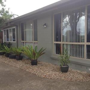 3-4 bedroom villa fully renovated Port Macquarie Port Macquarie City Preview