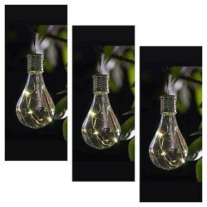 Hanging light bulb garden