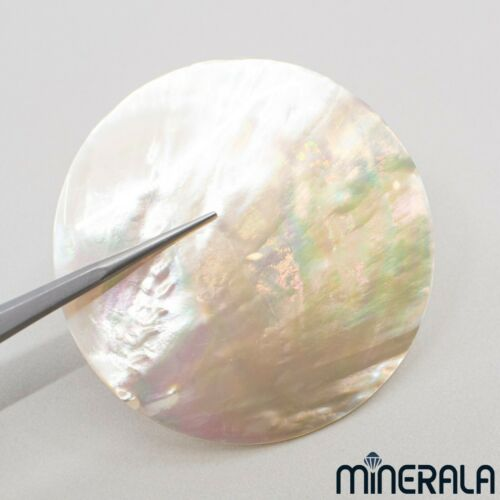 [WHOLESALE] NATURAL FRESHWATER MOTHER OF PEARL SHELL ROUND 55mm GEMSTONE WP0271D