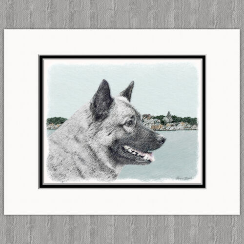 Norwegian Elkhound Dog Original Art Print 8x10 Matted to 11x14