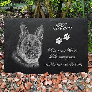GRABSTEIN Tiergrabstein Gedenkstein Hunde Hund-020 ► Foto Gravur ◄ 35 x 25 cm