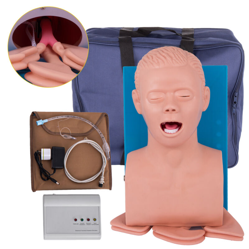 Intubation Manikin Study Teaching Adult Airway Management Trainer 110V w/Tube