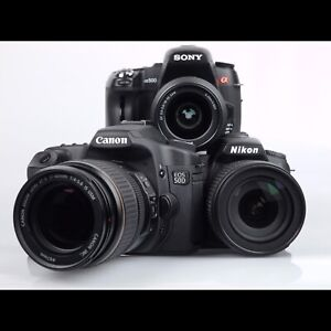 Looking for a DSLR, Mirrorless, or super zoom point and shoot