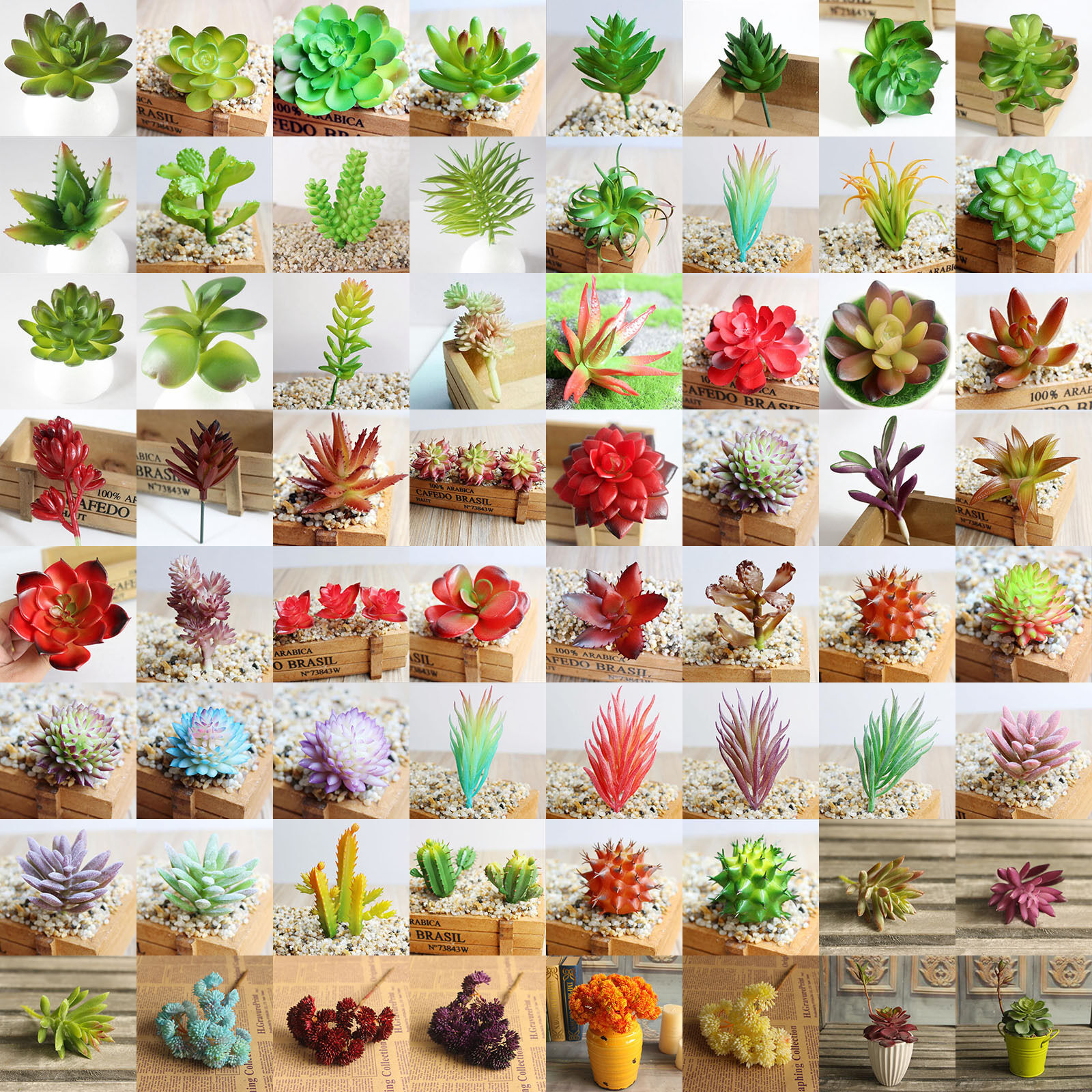 Artificiale Fiore Piante Grasse Piante Succulenti Pianta Succulente Grassa