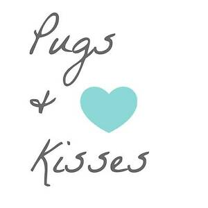 Pugs & Kisses - Pug Only Day Care Frenchs Forest Warringah Area Preview