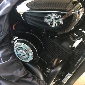 2015 Harley Davidson Street 500
