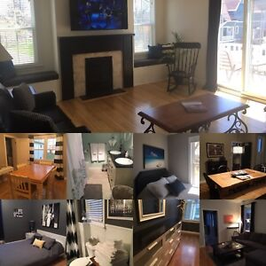 2 bedroom downtown furnished apartment for rent
