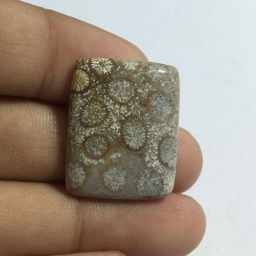 Natural Fossil Coral Gemstone Cab Top Quality Baguette Shape 25 Cts UNE-5A