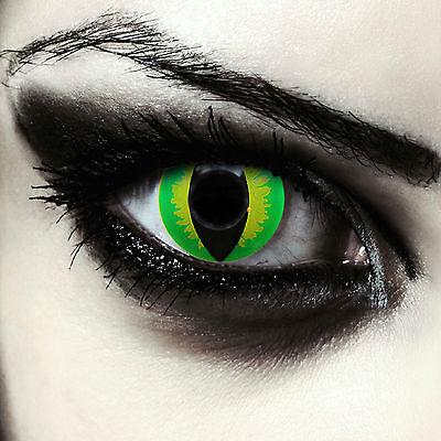 Grüne Drachen Katzenaugen Kontaktlinsen für Halloween Kostüm grün