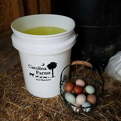 Poultry Livestock - Vitamins And Electrolytes Chicken Chicks Waterfowl