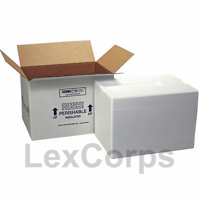 Polar Tech Insulated Foam Container With Shipping Box Thermo Chill Mailer