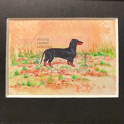 Dachshund Postage Stamp Art  DOG ACEO Original painting, Philately framed stamps