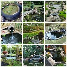 Got a spot in your garden you want to fill, What about a pond? Windsor Hawkesbury Area Preview