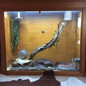 reptile enclosure/house McGraths Hill Hawkesbury Area Preview