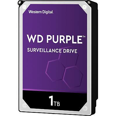 WD Purple 1 TB, Festplatte