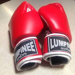 Thai Boxing Gloves Westmeadows Hume Area Preview