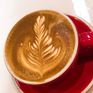 looking for barista position Carlton Melbourne City Preview