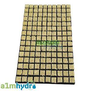 Grodan 25mm SBS Rockwool Propagation Grow Cubes Tray Of 150 Starter Hydroponics