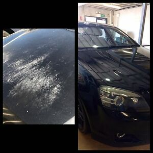 Looking for a Professional Car Detailer? East Fremantle Fremantle Area Preview
