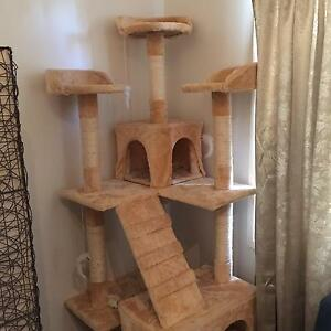 CAT SCRATCHING POST Cabramatta West Fairfield Area Preview