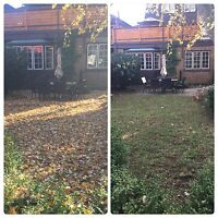 Lawn and Garden Maintenance/Fall Clean Up/Shrub and Tree Removal