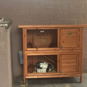 Rabbit hutch Bankstown Bankstown Area Preview