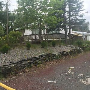 Available May 1 cabin in Deer Park, Salmonier Line!