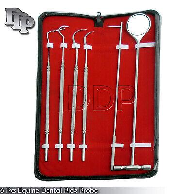 6 Pcs Equine Dental Pick Probe Scalers Veterinary Instruments