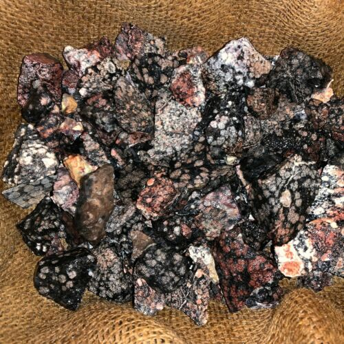 3000 Carat Lots of SNOWFLAKE Obsidian Rough - Plus FREE Faceted Gemstone