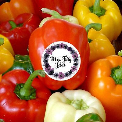 ❗️ANGEBOT❗️20 Samen Paprika Gemüse Mix verschiedene Farben Bunte Sorten organic