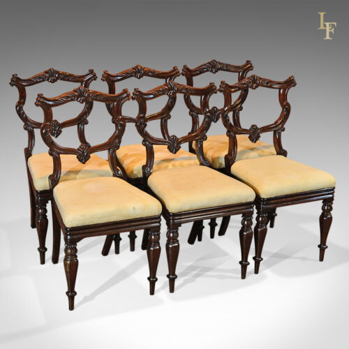 Antique Dining Chairs, Set Of 6, Fine Quality English Rosewood William IV c.1835