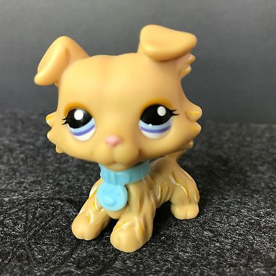 Littlest Pet Shop Collie Dog #1194 LPS Yellow Blue Eyes With Collar Boy Gift