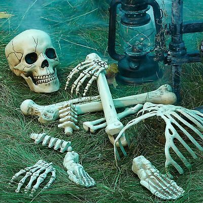 Life-Size Bag of Bones Human Skeleton Body Parts Halloween Prop Haunted - Skeleton Parts Halloween