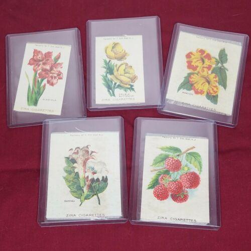 Zira Cigarettes  Tobacco Silks Flowers and Fruit  5 piece Vintage lot