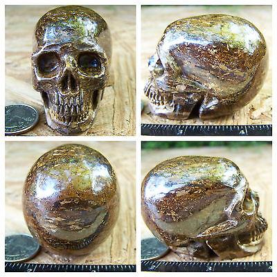 "2.5"" Bronzite Skull 227.2g Crystal Healing Large Reiki Realistic 8.0oz Halloween"